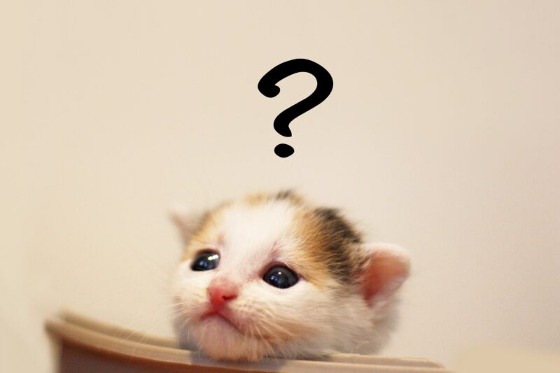 千葉県のラブ探偵事務所で調査依頼前によくある質問