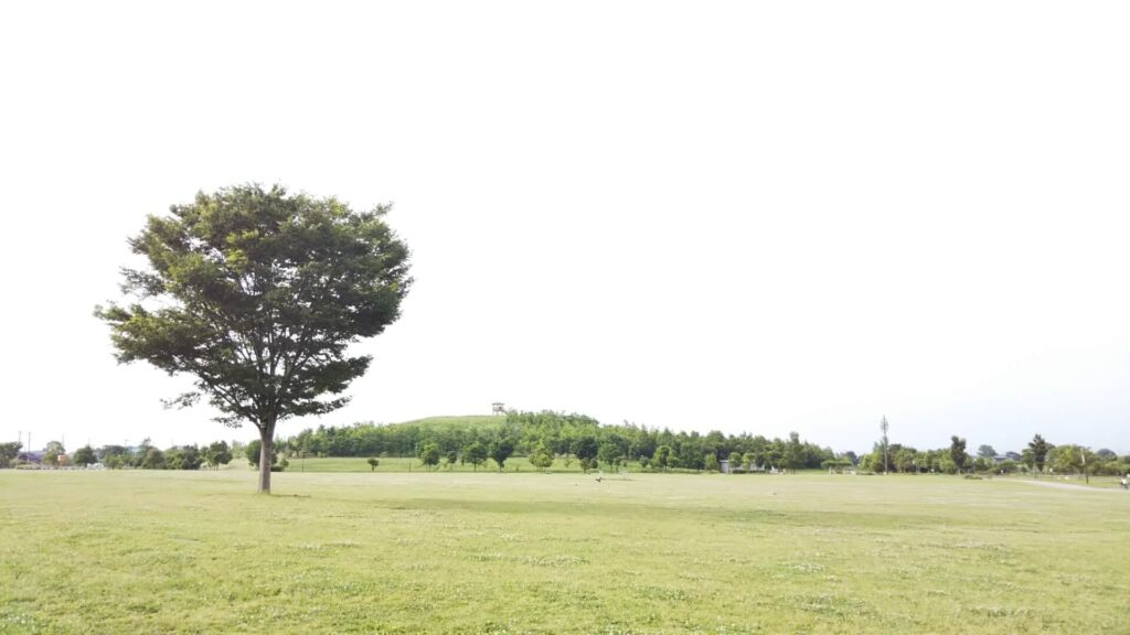 埼玉県北葛飾郡の浮気調査・不倫調査で選ばれるラブ探偵事務所