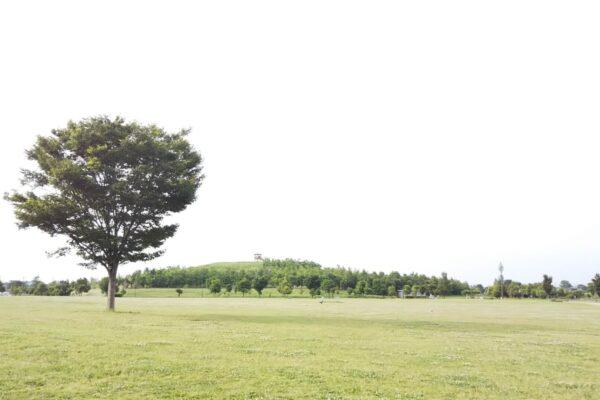 埼玉県北葛飾郡の浮気調査で選ばれるラブ探偵事務所